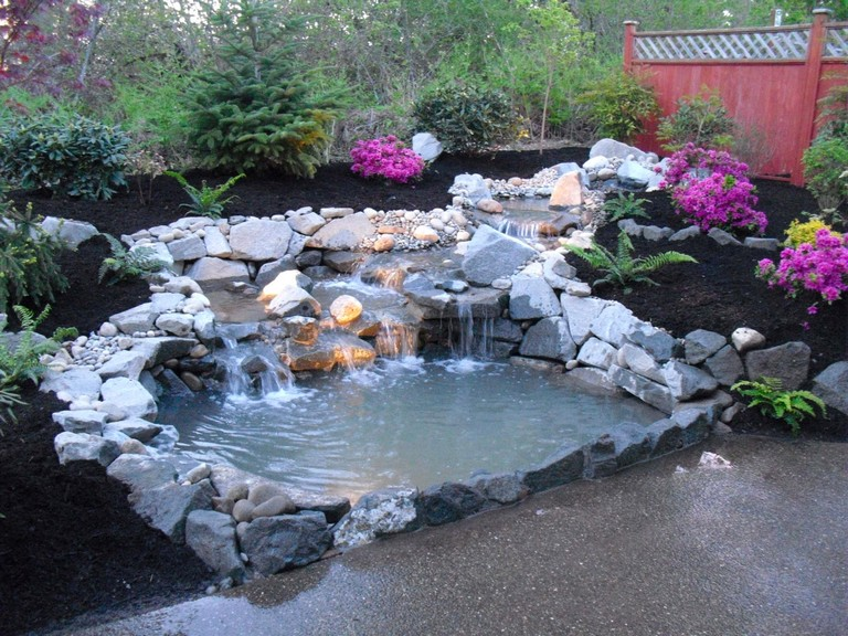 Backyard Duck Pond Ideas