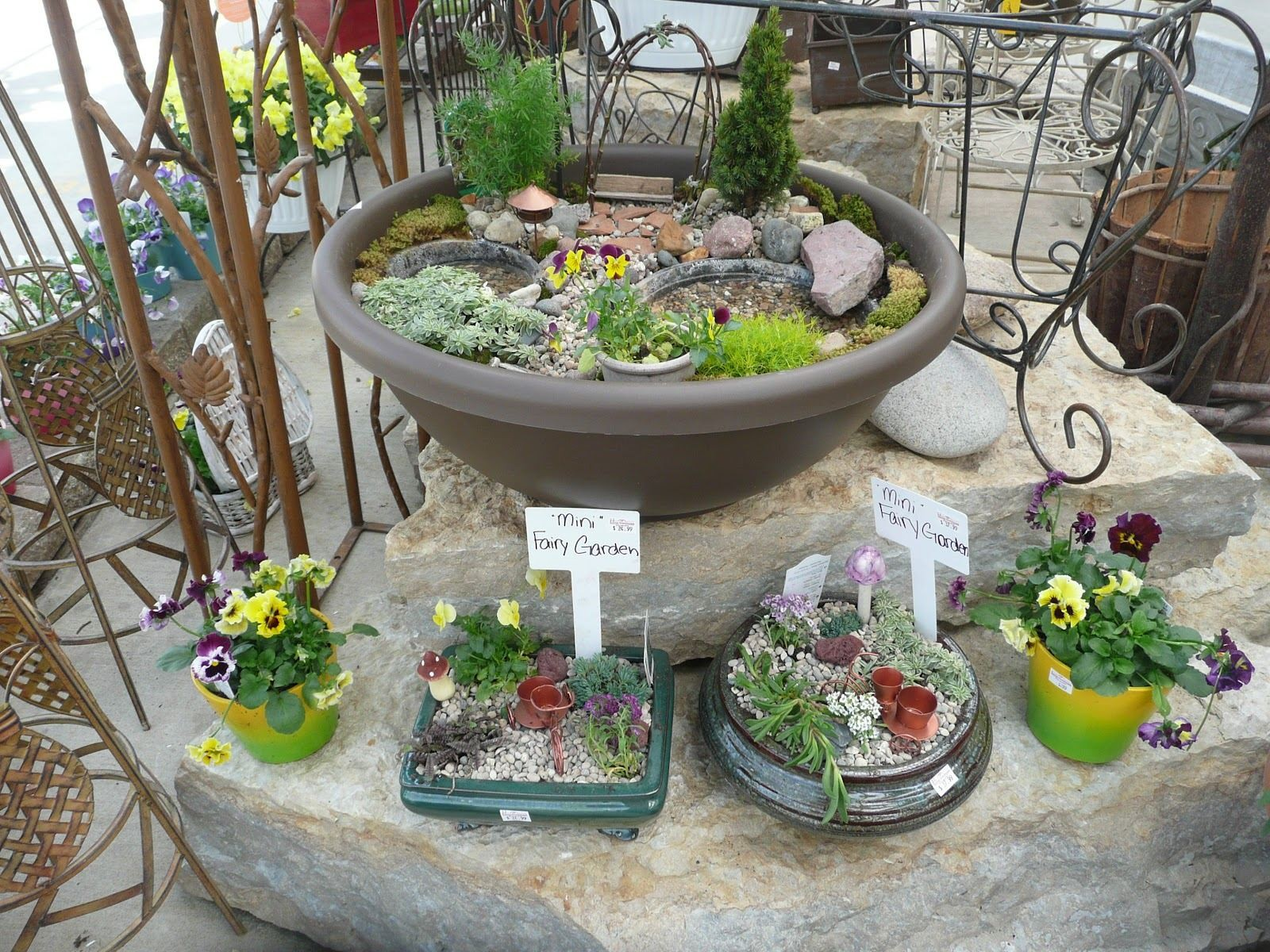 Fairy Garden Containers For Sale