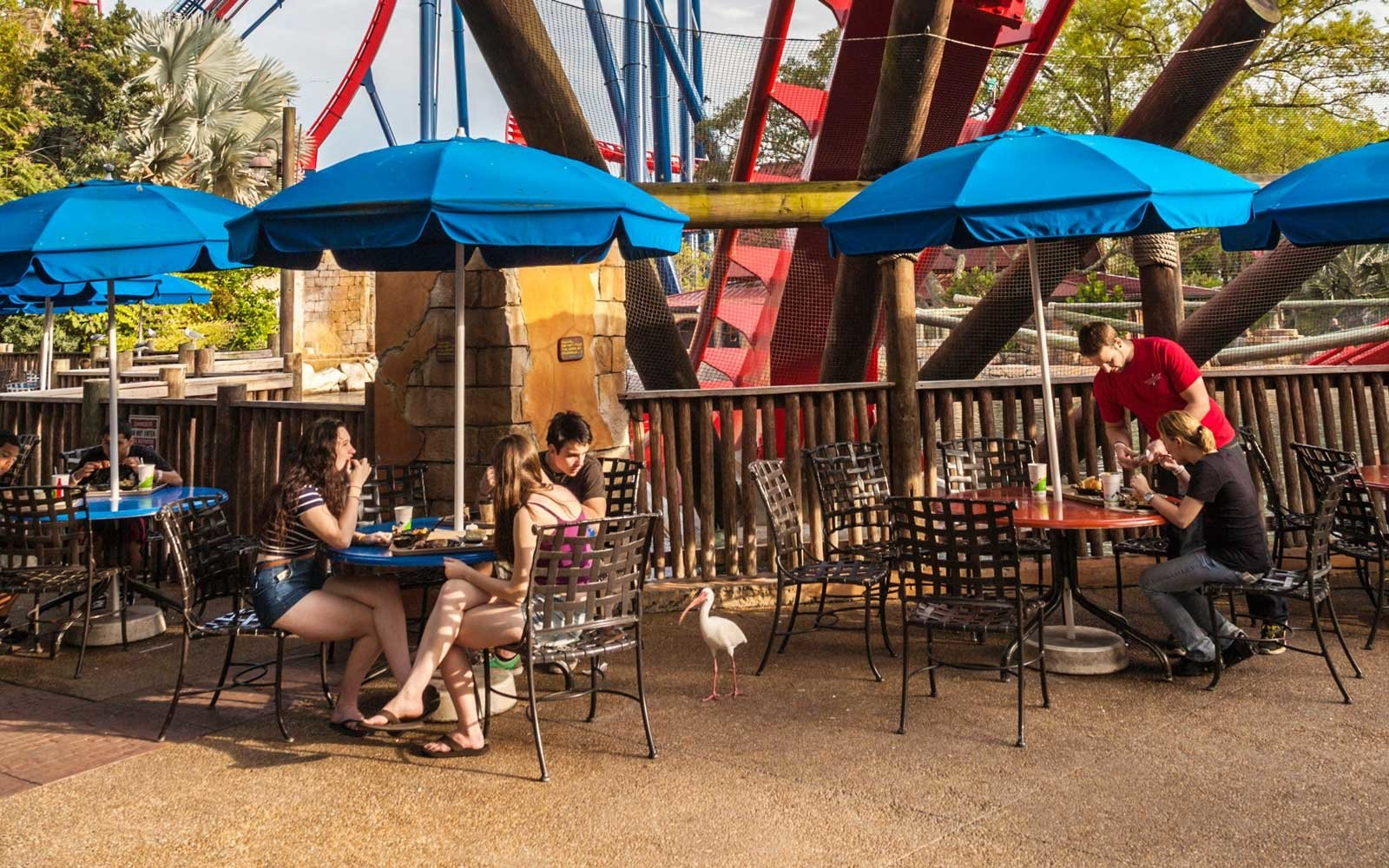 Restaurants Near Busch Gardens